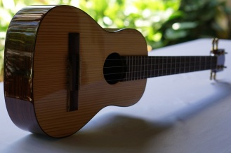 Guitarrilla_High-end-Zepeda_4
