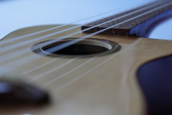 Ukulele_High-end_Cutaway_Zepeda12