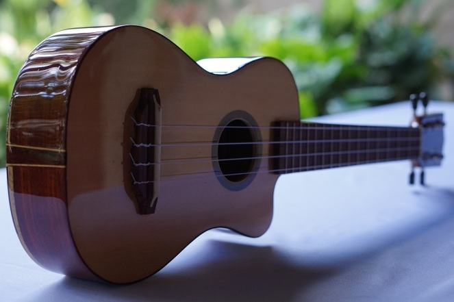 Ukulele_High-end_Cutaway_Zepeda9