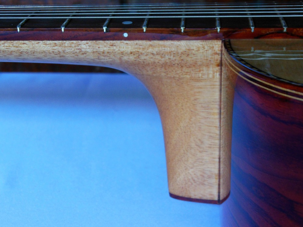 Zepeda High-end Dreadnough Cutaway (11)