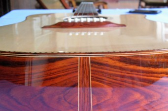 Zepeda High-end Dreadnough Cutaway (12)