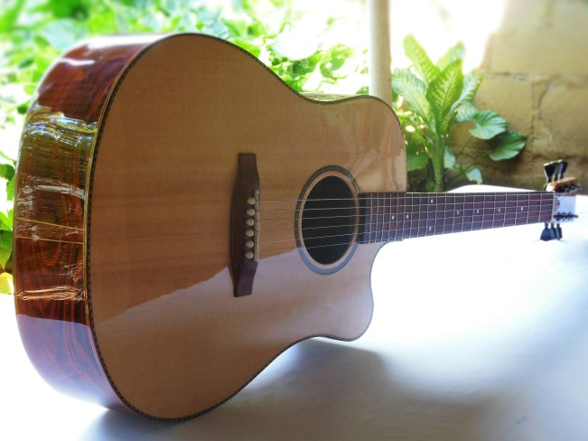 Zepeda High-end Dreadnough Cutaway (13)