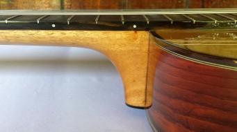 Zepeda High-end Dreadnough Cutaway (2)