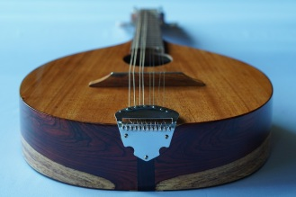 ZEPEDA-Mandolin_High-end (6)